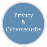 Privacy and Cybersecurity